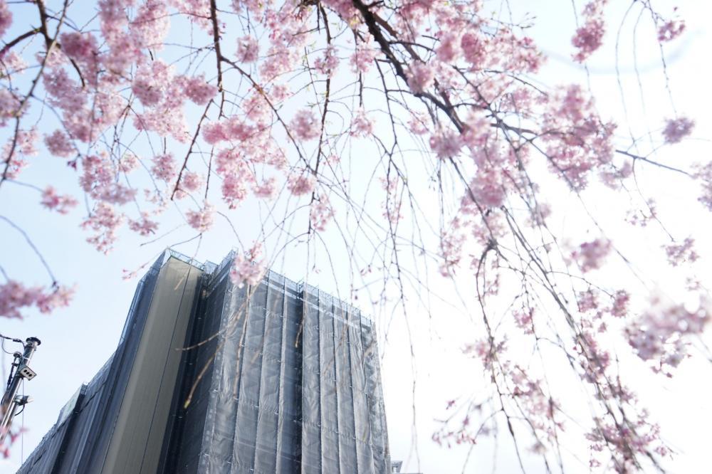 日本をより近代化させる仕事