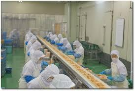 鮭やサバなどを加工する工場のお仕事です!