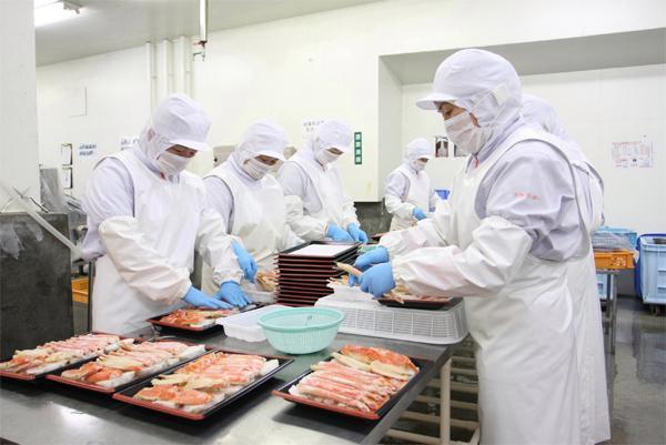 熟成魚や塩ぶりの加工のお仕事です!